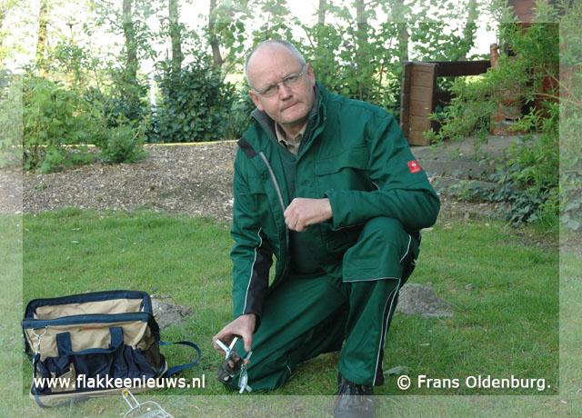 Foto behorende bij Oldenburg erkend ongediertebestrijder op Goeree-Overflakkee