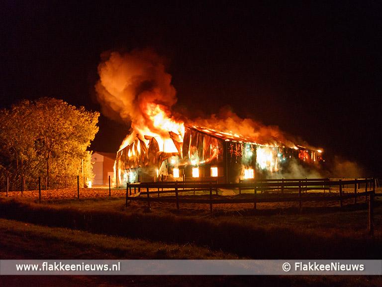 Foto behorende bij Zeer grote brand in paardenschuur Sommelsdijk