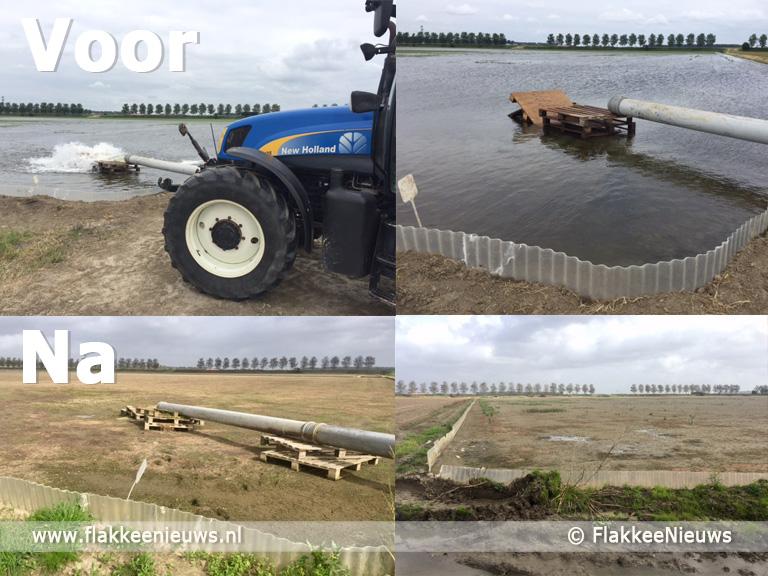 Foto behorende bij Waterbad helpt tegen miniwormen op uienveld