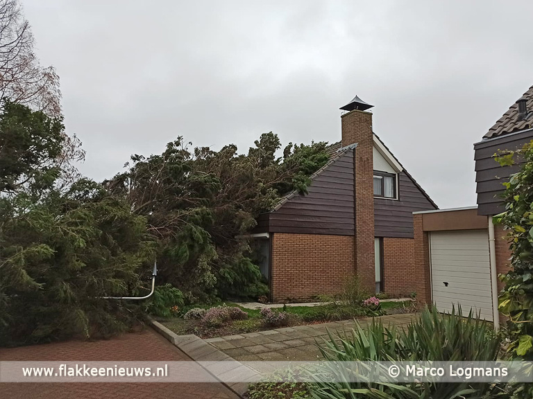 Foto behorende bij Veel stormschade op Goeree-Overflakkee