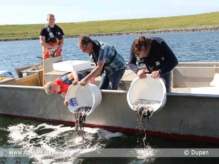 Foto behorende bij Zeeland, Zuid-Holland en Friesland verwelkomen 580.000 jonge palingen