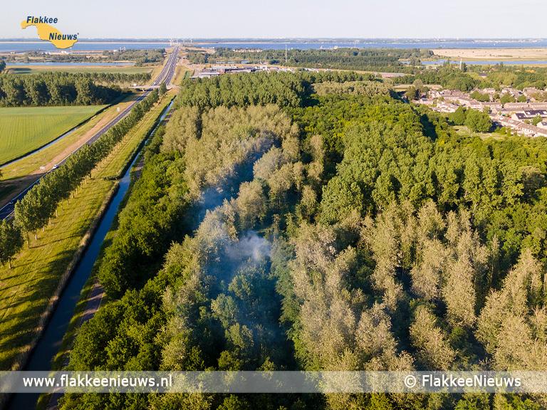 Foto behorende bij Brandweer rukt met veel materieel uit voor bosbrand