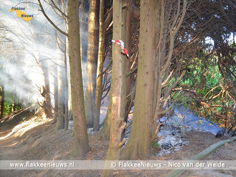 Foto behorende bij Brand in een bos en bij natuurgebied De Slikken
