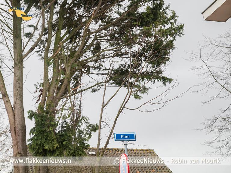 Foto behorende bij Storm Evert laat sporen na op Goeree-Overflakkee