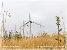 Foto behorende bij Windpark Battenoert betaalt € 70.000,- rente