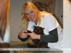 Foto behorende bij Den Bommel heeft nieuwe dierenartspraktijk