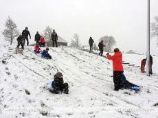 Foto behorende bij Plezier en overlast van sneeuw op Goeree-Overflakkee